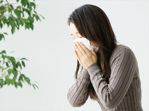 くしゃみ・尻もち・おじぎ…何気ない動作が骨折の原因に